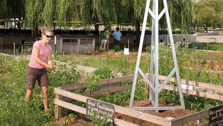 Slow food garden 4