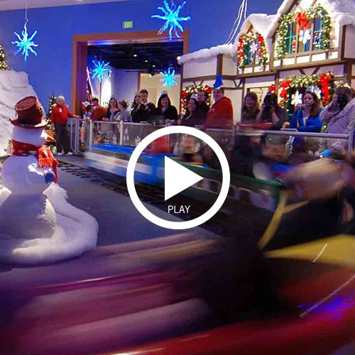 Holiday celebration crossing video