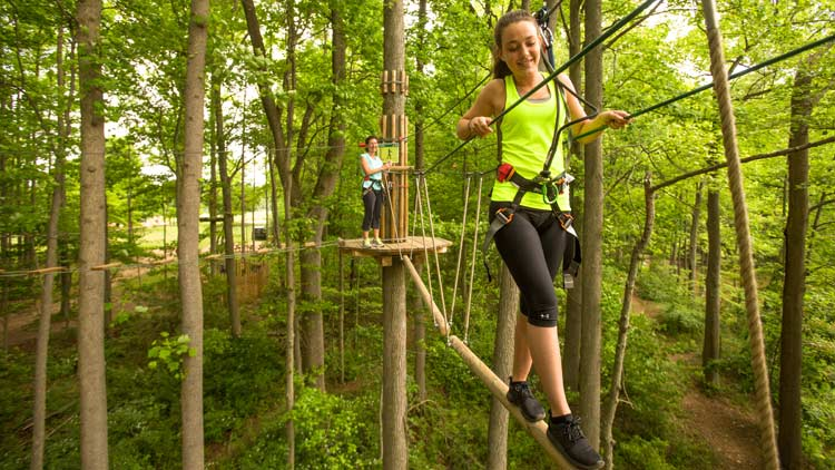 Go Ape Treetop Adventure 10