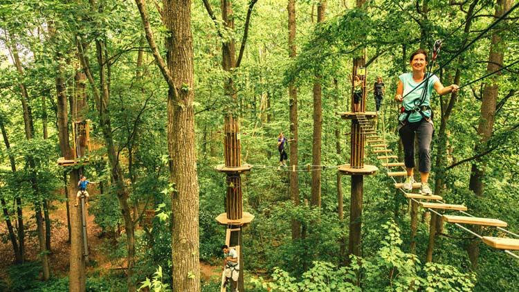 Go Ape Treetop Adventure 16