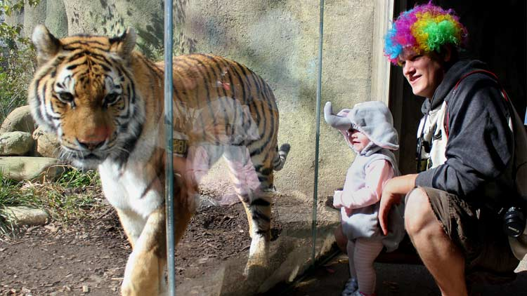 Halloween ZooBoo presented by Central Indiana Honda Dealers 6