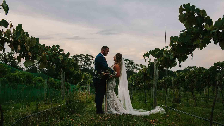 Daniel's Family Vineyard & Winery 14