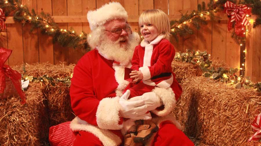 Christmas on the Farm 2