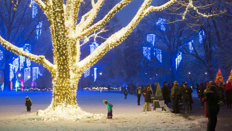 Best Holiday Light Displays in Indy