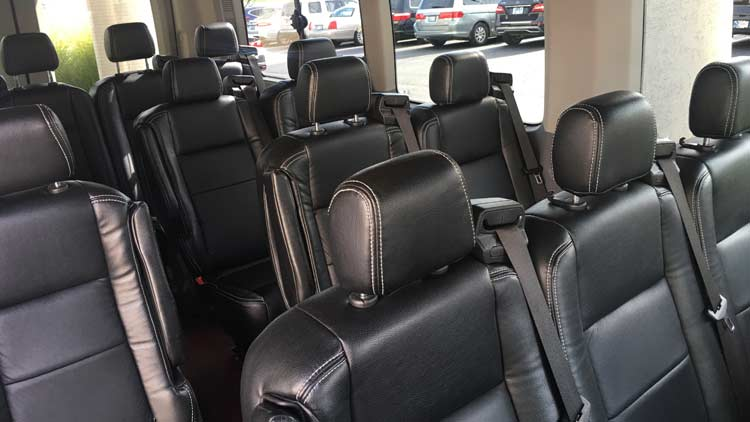 Aadvanced Limousines 6