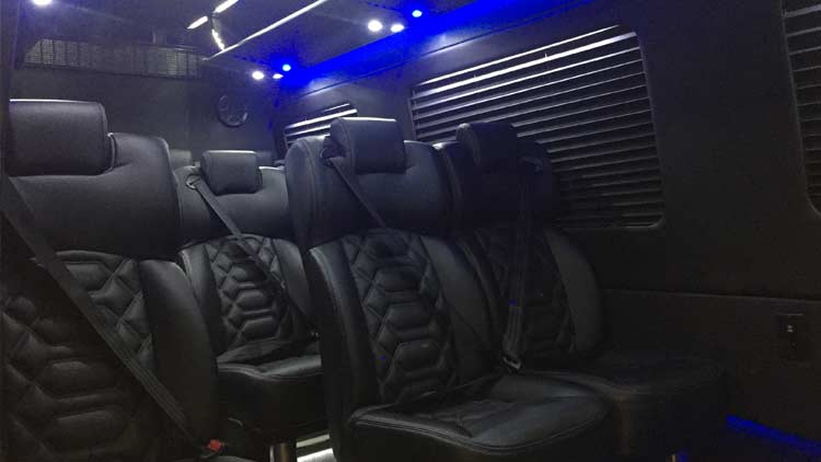 Aadvanced Limousines 9