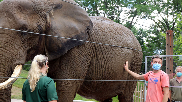 Get Up Close and Personal with a New Elephant Experience at the Indianapolis Zoo