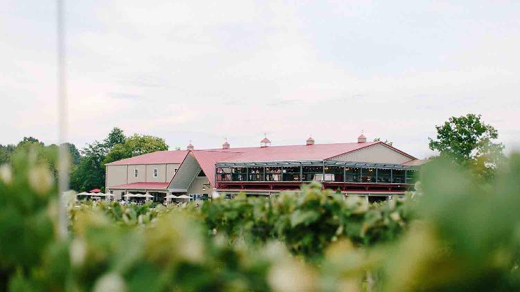 Daniel's Family Vineyard & Winery